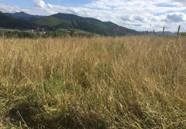 Predaj pozemku v obci Bzenica, časť Bukovina. (167-14-LOS )
