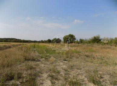 PREDAJ: Pozemok Chorvátsky Grob - Čierna Voda 817 m2 , Triblavinská