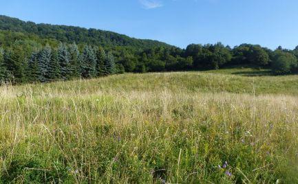 Pozemky pre rekreačné účely, Ladno, Trnavá Hora, Kremnické vrchy - DOHODA na cene možná
