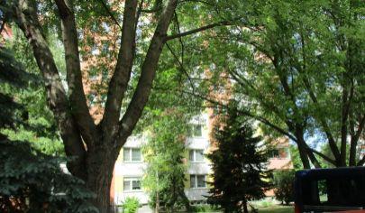 NITRA 2 izbový byt 60m2 Chrenová