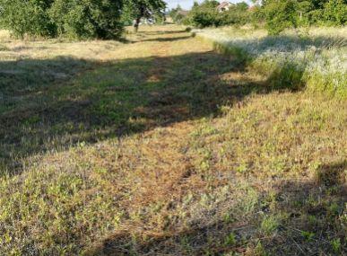 Maxfin Real - ponúka na predaj pozemok s návrhom na rodinný dom, Šoporňa