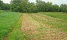 Ponúkame na predaj pekný pozemok v obci Seniakovce
