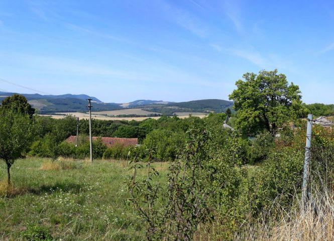 záhrada - Krajné - Fotografia 1