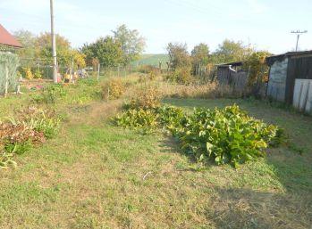 Predáme stavebný pozemok v obci Vinohrady nad Váhom