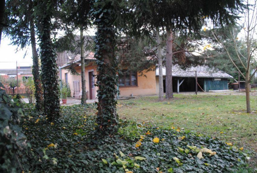 Predaj Rodinné domy Želiezovce-3