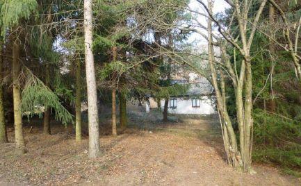 Chata blízko Pezinskej baby aj s možnosťou celoročného bývania.