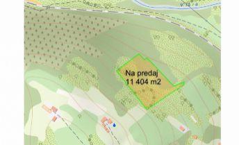 Rezervované Ponúkame na predaj rekreačný pozemok 11404  m2, Horné Srnie.