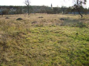 EXKLUZÍVNE - Predáme pozemok - Košice - okolie - Malá Ida