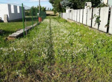 MAXFIN REAL - ponúka na predaj pozemok na výstavbu rodinného domu, Šoporňa