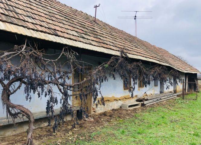 chata - Malé Zálužie - Fotografia 1