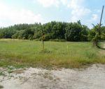 Lukratívny pozemok pre výstavbu RD, 19 812 m2, Blatná na Ostrove, okr. Dunajská Streda. Exkluzívna ponuka!!!