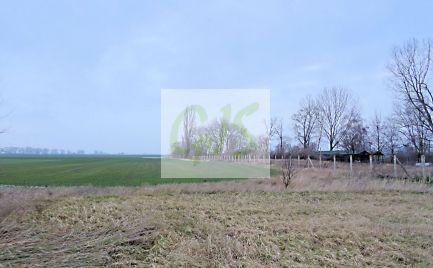 Výborná cena pozemku so starým domom v krásnom zelenom prostredí. Možnosť kúpy aj na splátky.