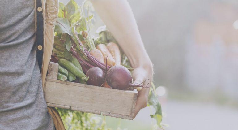 Hľadáme pozemok alebo starší poľnohosp. objekt na menšiu súkromnú biofarmu