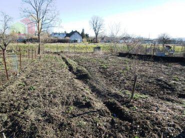 Stavebný pozemok 1120 m2 - Nové Sady okr. Nitra