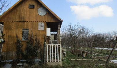 PÁROVSKÉ HÁJE záhrada s chatkou pozemok 600m2