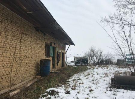 Pozemok so starým domom Bojná / Malé Dvorany