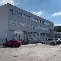 Kancelárie, Bratislava-Nové Mesto, 300 m², Čiastočná rekonštrukcia