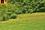 trvalý trávnatý porast - Plevník-Drienové - Fotografia 2