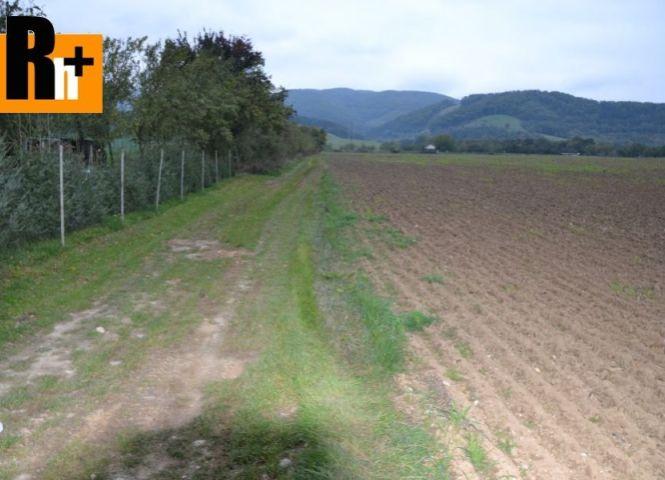 orná pôda - Plevník-Drienové - Fotografia 1