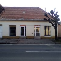 Polyfunkčný objekt, Krupina, 250 m², Čiastočná rekonštrukcia