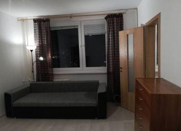 Priestranný 1-izb byt po rekonštrukcii, menšie zvieratko povolené, Adámiho, Karlova Ves