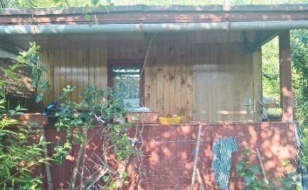 Záhrada 270 m2 s chatkou v lokalite Martin - Karvaša-Bláhovca