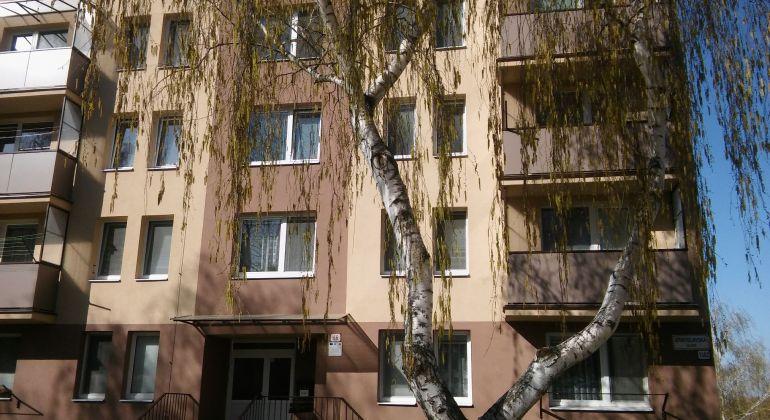 2 - izb. byt v Holíči