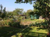REALITY COMFORT - Na predaj záhrada so záhradnou chatkou v Prievidzi
