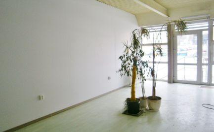 Prenájom obchodných priestorov 53 m2 vhodné na podnikanie