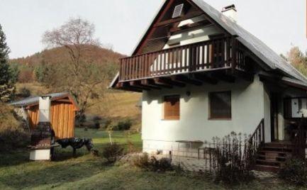 Chata na pozemku 769 m2 v krásnom prostredí, Brieštie - Hadviga