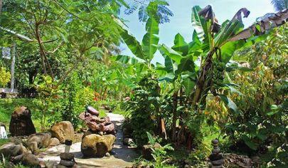 Na predaj MÚZEUM RUMU s areálom Historický skvost na brehu Atlantického oceánu Ostrov Dominika v súostroví Malé Antily, West Indies, Karibik