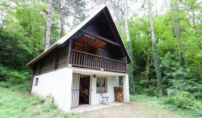 Exkluzívne APEX reality - na predaj murovaná chatka v časti Lipník (Koplotovce), voda, elektrina, tuhé palivo