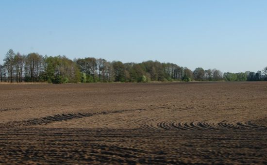 ARTHUR - dopyt orná pôda od 2 ha do 100 ha