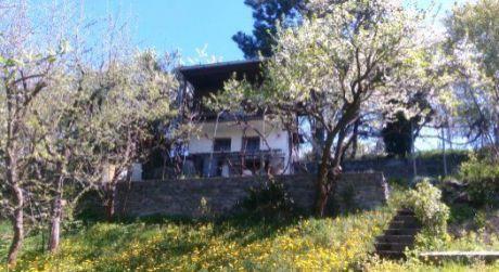 Predaj záhrady s murovanou chatkou Zvolen - Zlatý Potok
