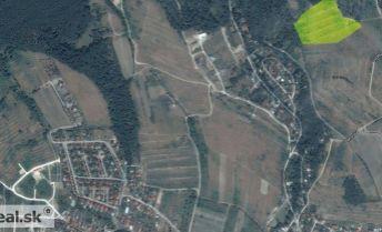 Rekreačný pozemok - vinica - Pezinok Nigle 34.105 m2