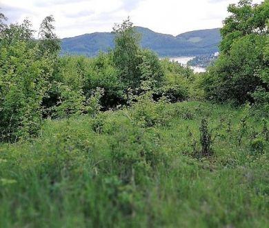 Ponúkame na predaj pozemok v obci Milochov s krásnym výhľadom na Nosickú priehradu, 8175m2.
