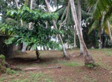 ACT Reality - Pozemok na Srí Lanke, 1.000 m2