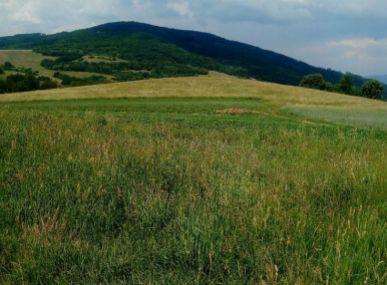 MAXFIN REAL - na predaj pozemok v okrese Detva.
