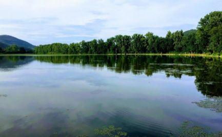 Pozemok pri rybníku pre rekreačné účely