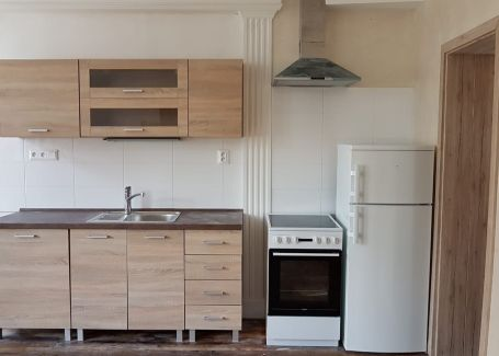 DELTA 1izbový zariadený byt v centre mesta Bratislava s klimatizáciou, 21m2