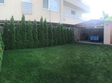 Predám krásny 4-izbový byt v Rovinke s vlastou záhradou.
