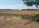 --PBS-- ++NA PREDAJ stavebné pozemky o výmere 1019 m2 /20 x 50m/, všetky IS na hranici pozemku, Jaslovské Bohunice
