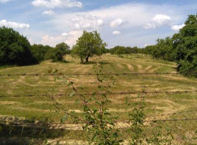 MAXFIN REAL - prenájom rozsiahlych pozemkov za Veľkým Lapášom