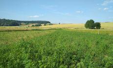 Pozemok v tichom prostredí, Košice - okolie