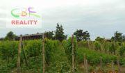 CBF- exkluzívne ponúkame dom s vinicou v prekrásnom prostredí
