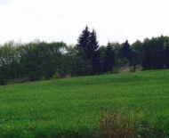 Pozemok na výstavbu RD v krásnom prírodnom prostredí, V CENE STAVEBNÉ POVOLENIE A PROJEKT DOMU