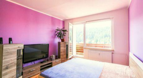 1-izbový byt (42m2) s balkónom na Bysterci