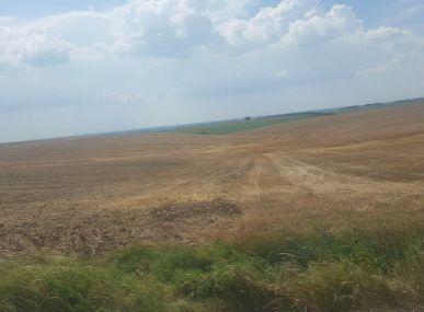 MAXFIN REAL na predaj orná pôda v katastri Veľký Báb 18000m2