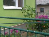 Na predaj dom v obci Ostrovany - 12 km od PO