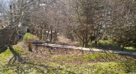 Predaj nádherného pozemku tesne pod lesom na Plachého ulici v Dúbravke